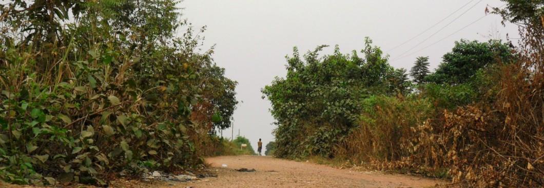 cropped-estrada-sakora-11.jpg